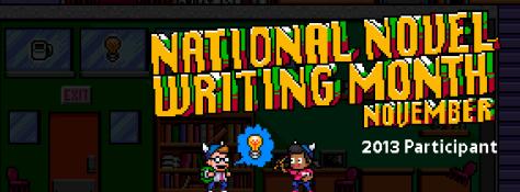 NaNoWriMo, 2013, participant, novel, writing, author