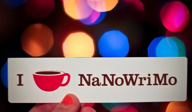 My NaNoWriMo experience