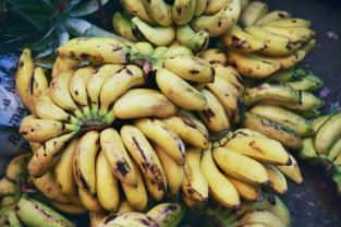 Fresh bananas, market stall in South Africa. Photo: Cornelia Kaufmann