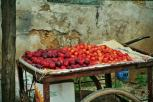 Burst of colour on the market in Dar Es Salaam. Photo: Cornelia Kaufmann