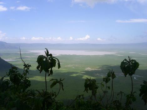 Ngorongoro Crater, Tanzania. Photo: Cornelia Kaufmann