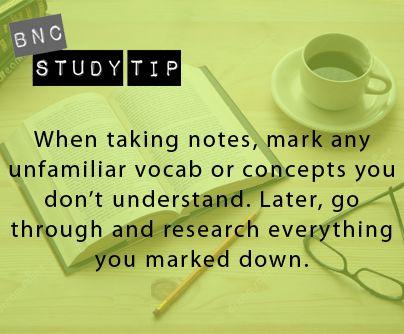 Study tip vocab