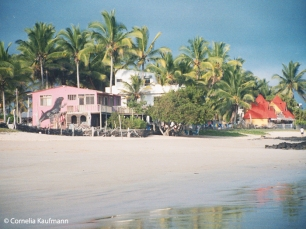 Beach view of casa iguana and Bar de Beto. Copyright Cornelia Kaufmann
