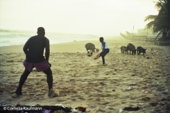 Playing ball on Cape Coast beach while the wild pigs watch. Copyright Cornelia Kaufmann