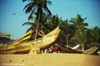 Boats on the beach. Copyright Cornelia Kaufmann
