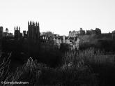 View of Castle Hill from Princes Street Gardens. Copyright Cornelia Kaufmann