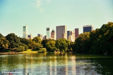 View south from Central Park. Copyright Cornelia Kaufmann