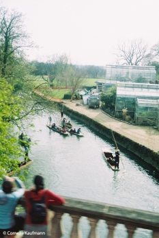 Punting on the Cherwell. Copyright Cornelia Kaufmann
