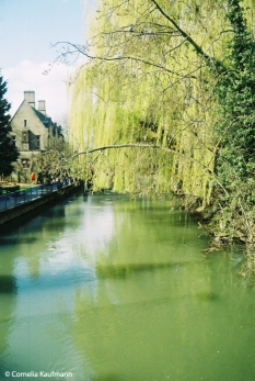 The river Cherwell. Copyright Cornelia Kaufmann