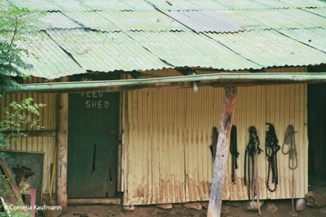 The feed shed. Copyright Cornelia Kaufmann