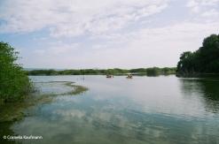 Wetlands to the west of town. Copyright Cornelia Kaufmann