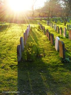 The Old Jordans cemetery. Copyright Cornelia Kaufmann