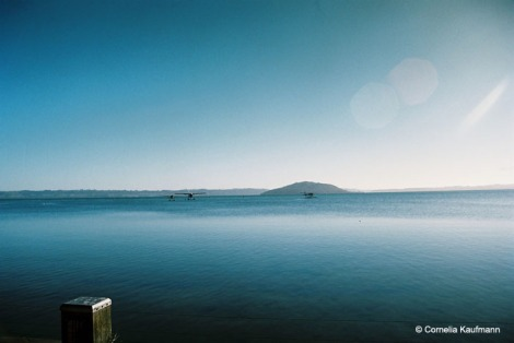 Early morning on Lake Rotorua, with three float planes on the water. Copyright Cornelia Kaufmann