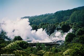 Eruption of the Pohutu Geyser. Copyright Cornelia Kaufmann