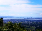 Rangitoto Island (left), Harbour Bridge and Auckland CBD (right) as seen from the Pukematekeo Lookout in the Waitakere Ranges. Copyright Cornelia Kaufmann
