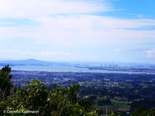 Rangitoto Island (left), Harbour Bridge and Auckland CBD (right) as seen from the Pukematekeo Lookout in the Waitakere Ranges. Copyright Cornelia Kaufmann