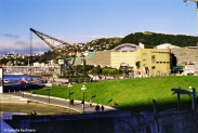 Waterfront and Te Papa. Copyright Cornelia Kaufmann