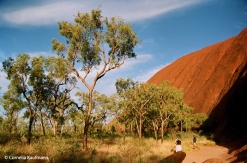 Along the Uluru Base Walk. Copyright Cornelia Kaufmann