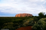 Uluru from the Sunset Viewing Area, Copyright Cornelia Kaufmann