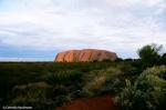 Uluru from the Sunset Viewing Area, Copyright Cornelia Kaufmann