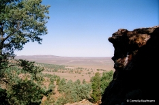 View towards the Flinders Ranges from the Yourambulla Caves outcrop. Copyright Cornelia Kaufmann