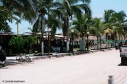Bars along the main square of Puerto Villamil. Copyright Cornelia Kaufmann