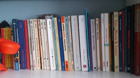 My shelf containing the required reading from my school.