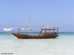 Dhow at Jambiani beach. Copyright Cornelia Kaufmann