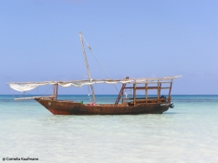 Dhow at Jambiani beach. Copyright Cornelia Kaufmann