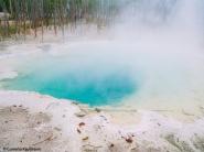 A hot pool in the Geyser Basin. Copyright Cornelia Kaufmann