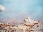 Sulphuric pool in Yellowstone. Copyright Cornelia Kaufmann