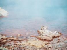 Sulphuric pool in Yellowstone. Copyright Cornelia Kaufmann