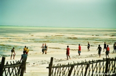 Jambiani beach at low tide. Joining the locals for a ball game. Copyright Cornelia Kaufmann