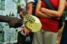 Market vendor slicing a pineapple for customers. Copyright Cornelia Kaufmann
