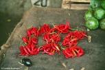 Market stall with chilis. Copyright Cornelia Kaufmann