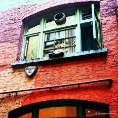 Buddha in the window at Neal's Yard. © Cornelia Kaufmann